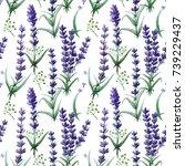 wildflower lavender flower... | Shutterstock . vector #739229437