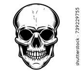 skull illustration isolated on... | Shutterstock .eps vector #739229755