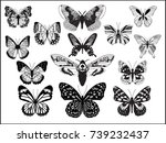 collection of detailized... | Shutterstock .eps vector #739232437