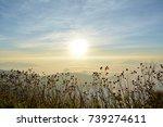 sun rise   Shutterstock . vector #739274611