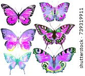 butterfly watercolor on a white | Shutterstock . vector #739319911