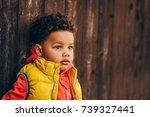 outdoor portrait of adorable... | Shutterstock . vector #739327441