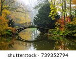 Scenic View Of Misty Autumn...