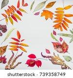 beautiful autumn frame made of... | Shutterstock . vector #739358749