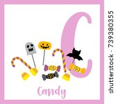 cute children abc alphabet c... | Shutterstock .eps vector #739380355