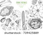 vegetables top view frame.... | Shutterstock .eps vector #739425889