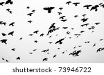 silhouettes of flying pigeons... | Shutterstock . vector #73946722