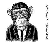 monkey businessman dressed in... | Shutterstock .eps vector #739478629