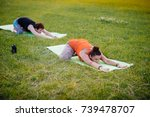 girls perform yoga exercises in ... | Shutterstock . vector #739478707