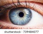 human eye medical detail | Shutterstock . vector #739484077