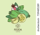Background With Feijoa Fruit ...