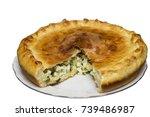 savory pie with chicken   onion ... | Shutterstock . vector #739486987