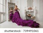 girl in evening dress   Shutterstock . vector #739491061