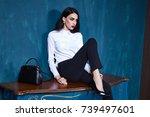 sexy beautiful woman dark...   Shutterstock . vector #739497601