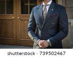 male model in a suit posing in... | Shutterstock . vector #739502467