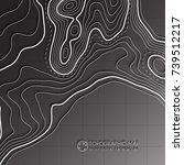 map line of topography. vector... | Shutterstock .eps vector #739512217