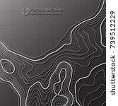 map line of topography. vector... | Shutterstock .eps vector #739512229