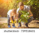 Stock photo the little boy and a father plant a tree 739518631
