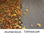 road with autumn colorful... | Shutterstock . vector #739544149