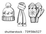 vector illustration of a winter ... | Shutterstock .eps vector #739586527