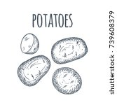 hand drawn potatoes sketch on... | Shutterstock .eps vector #739608379