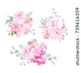 gentle mix of pink bouquets... | Shutterstock .eps vector #739616359