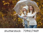 beautiful girlfriends on the... | Shutterstock . vector #739617469