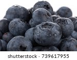 fresh blueberries with water... | Shutterstock . vector #739617955