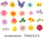 flower set | Shutterstock .eps vector #739621171
