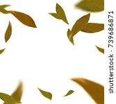 bright orange autumn leaves... | Shutterstock .eps vector #739686871