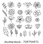 set of hand drawn flowers and... | Shutterstock .eps vector #739754971