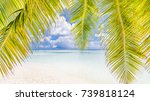 palm and tropical beach and... | Shutterstock . vector #739818124