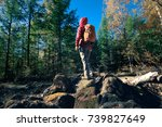 woman backpacker hiking in the... | Shutterstock . vector #739827649