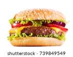 hamburger with vegetables...   Shutterstock . vector #739849549