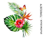 beautiful tropical palm leaves... | Shutterstock . vector #739852879