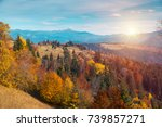 colorful autumn landscape in... | Shutterstock . vector #739857271