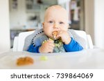 baby boy eating bread and... | Shutterstock . vector #739864069