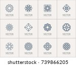 linear ornamental logo... | Shutterstock .eps vector #739866205