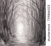 woodland path. ghostly forest... | Shutterstock . vector #739866325