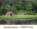 pit dwelling house | Shutterstock . vector #739877131