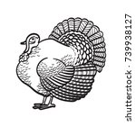 thanksgiving day turkey sketch... | Shutterstock .eps vector #739938127