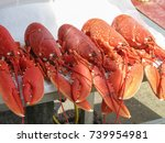 Five Red Cooked Fresh Lobsters...