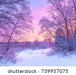 Winter Panorama Landscape With...