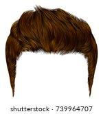 trendy stylish man hairs ginger ... | Shutterstock .eps vector #739964707