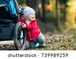 baby boy playing in autumn...   Shutterstock . vector #739989259