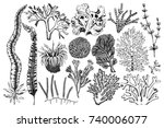 vector collection of hand drawn ... | Shutterstock .eps vector #740006077
