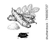 carob vector superfood drawing. ... | Shutterstock .eps vector #740030737