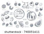 fruits set. hand drawn vector.... | Shutterstock .eps vector #740051611