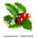 holly berry leaves christmas... | Shutterstock . vector #740072209