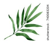 tropical leaves bamboo tree in... | Shutterstock . vector #740083204